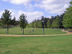 cedar grove park